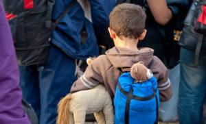 難民認定申請サポート