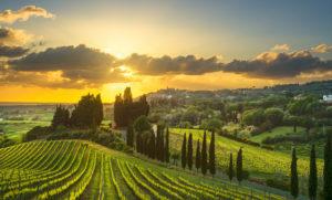 農地売買・貸借、農地法3条許可・届出代行
